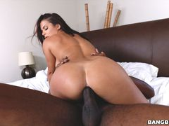 Keisha Grey's big ass takes a big cock