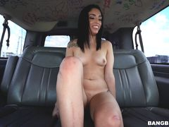 The BangBus Gets Pulled Over