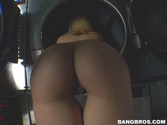 Ass in The Laundry Mat